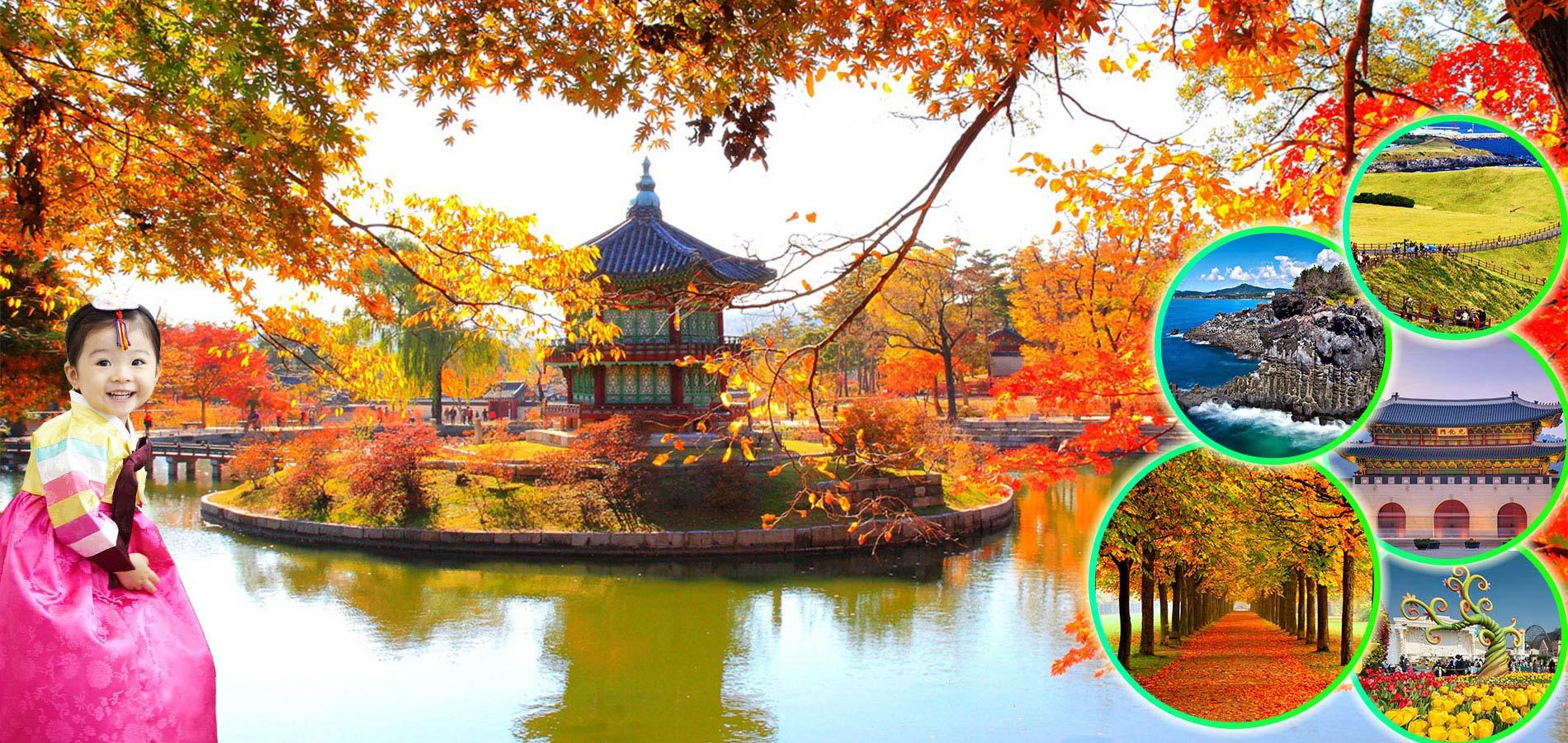 Kinh nghiệm du lịch Hàn Quốc mùa thu